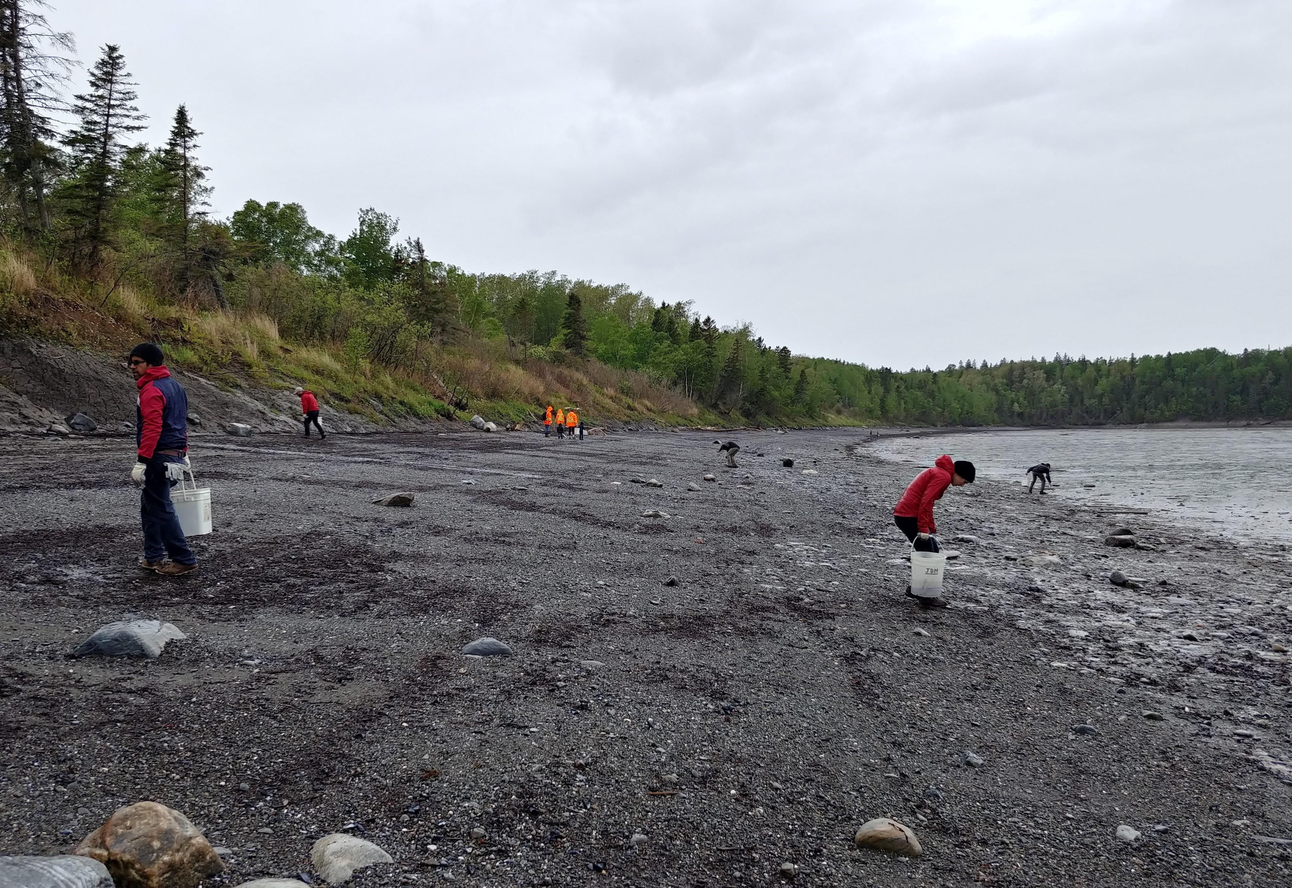 Sept municipalités de La Mitis participeront à la grande corvée de nettoyage, le 5 juin.