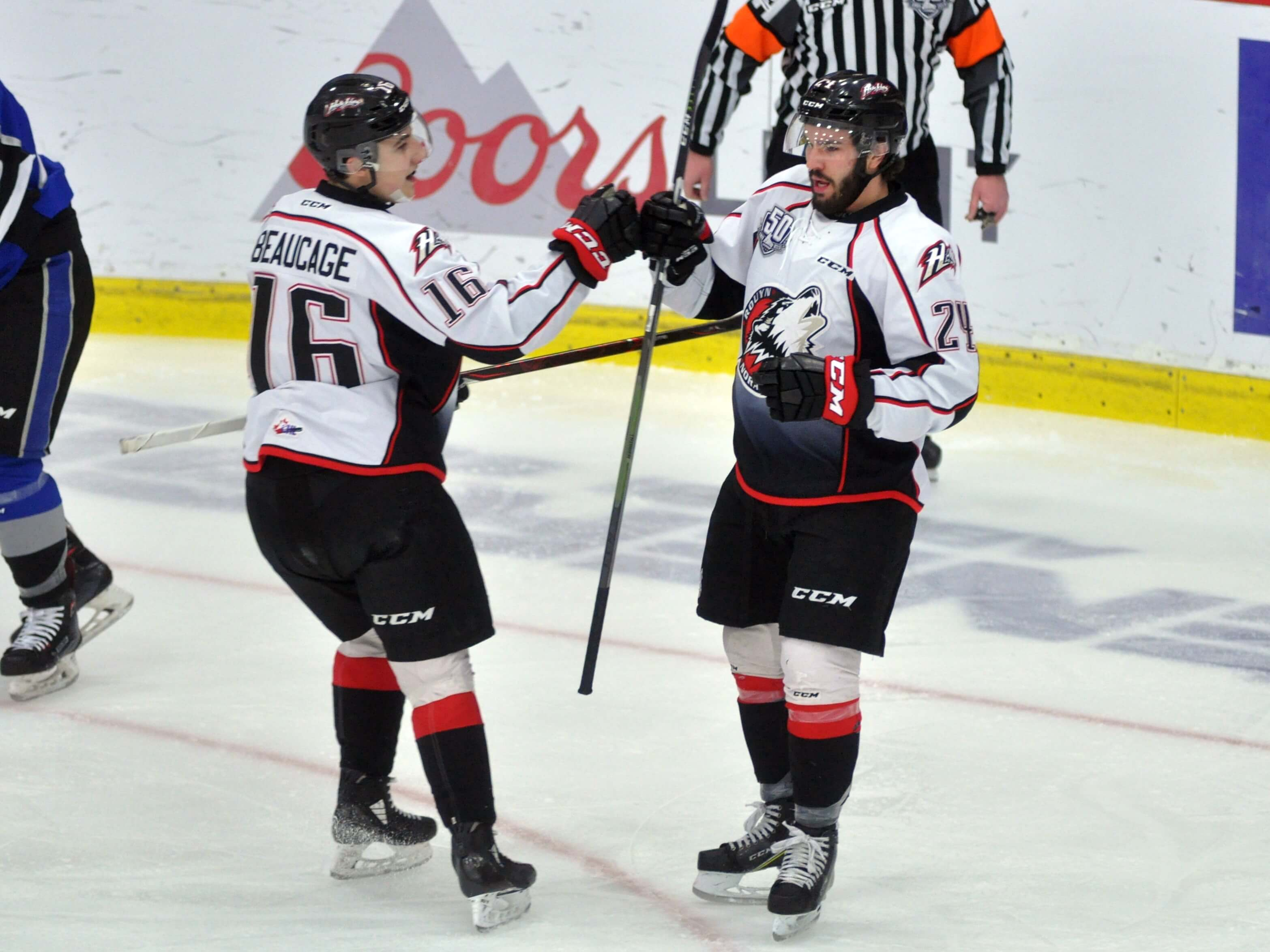Huskies Rouyn-Noranda Sea Dogs Saint John