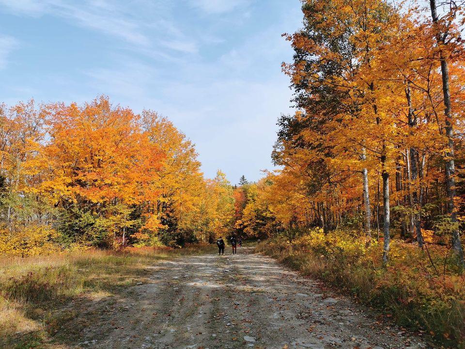 La Fête des récoltes est prévue le dimanche 18 octobre à l'extérieur du centre communautaire de Saint-Valérien.