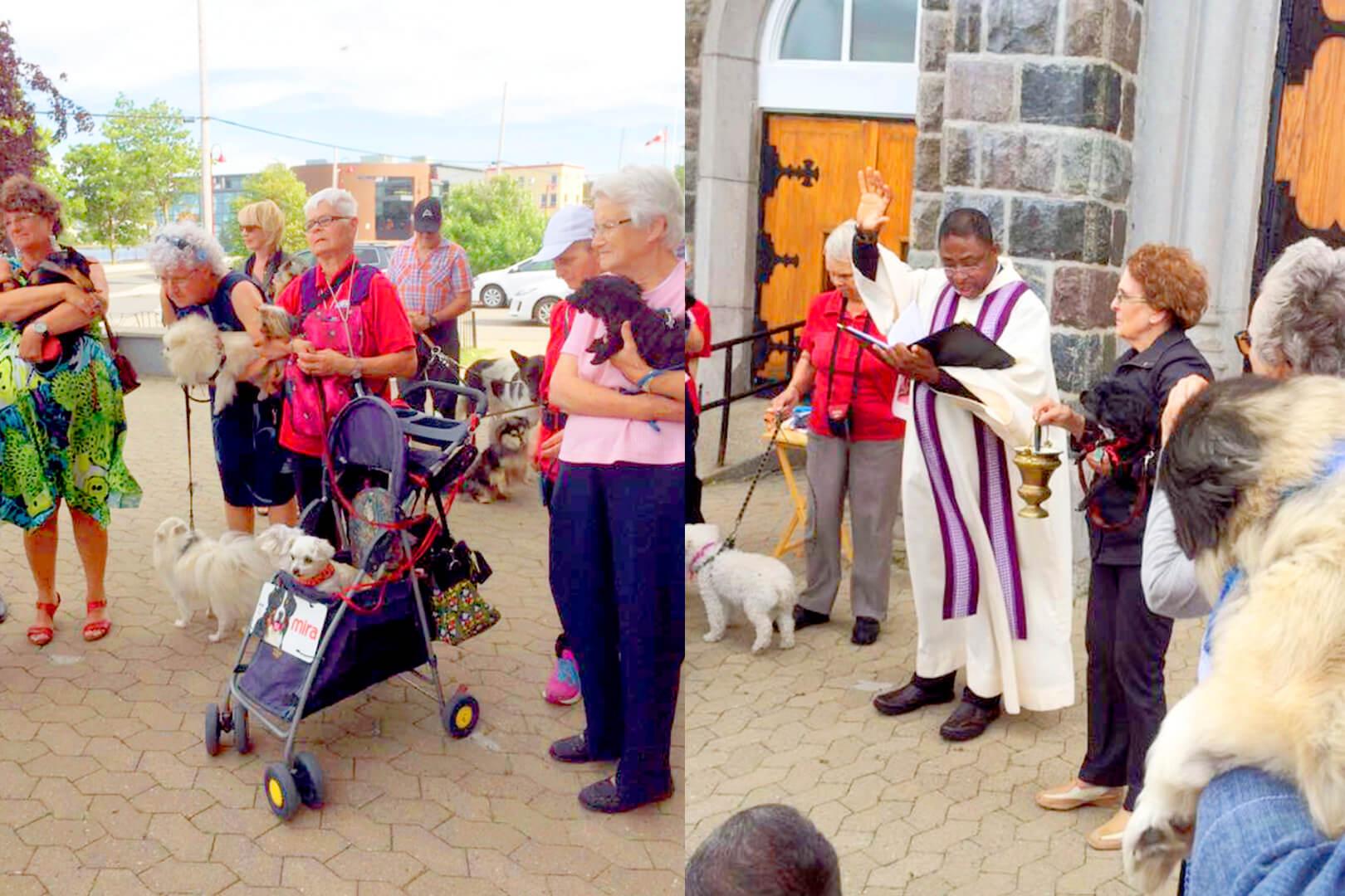 Saint-Roch Matane bénédiction animaux parvis église Thérapie canine de Matane