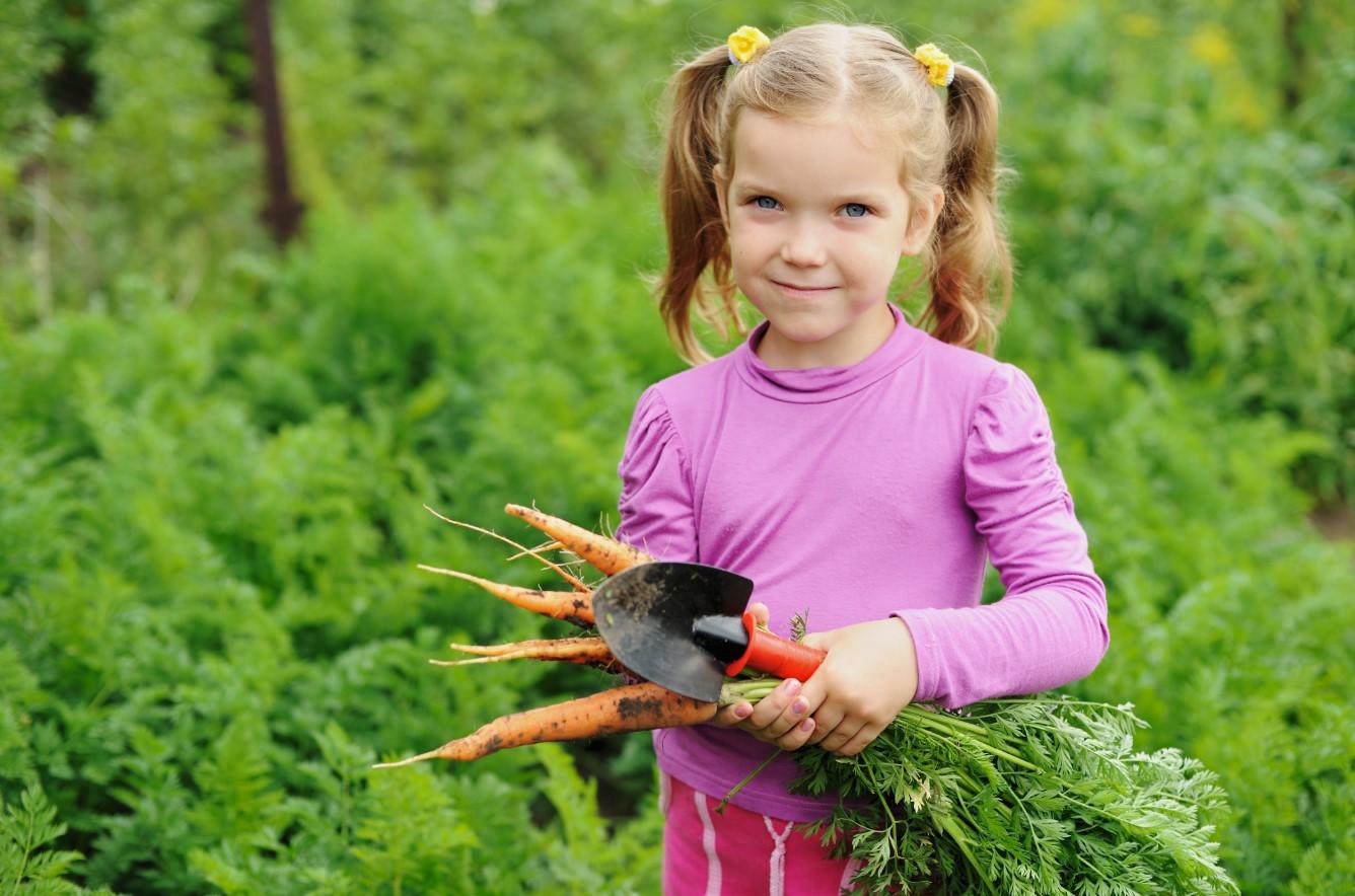Vitamine D enfant développement