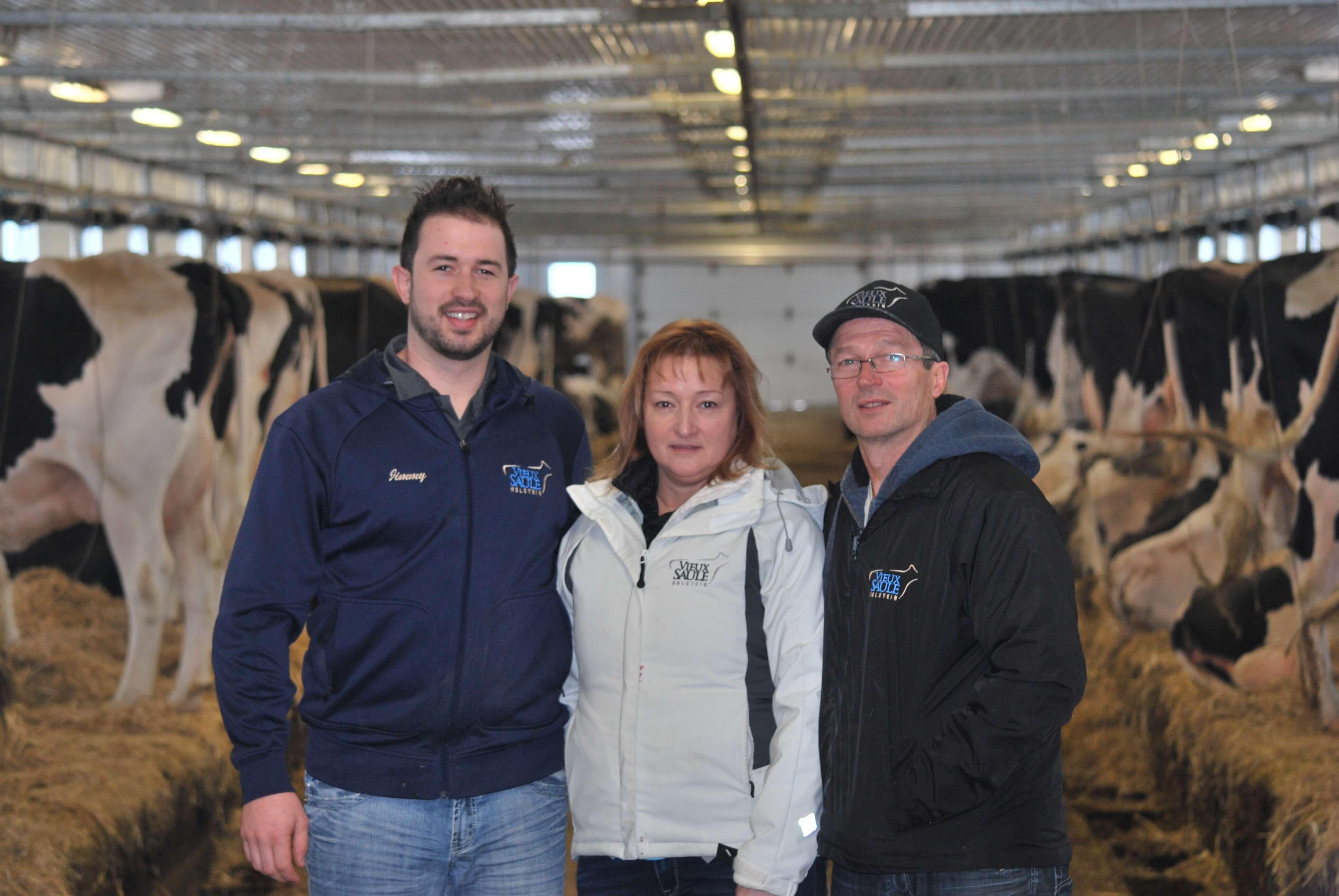 Ferme Vieux Saule Holstein