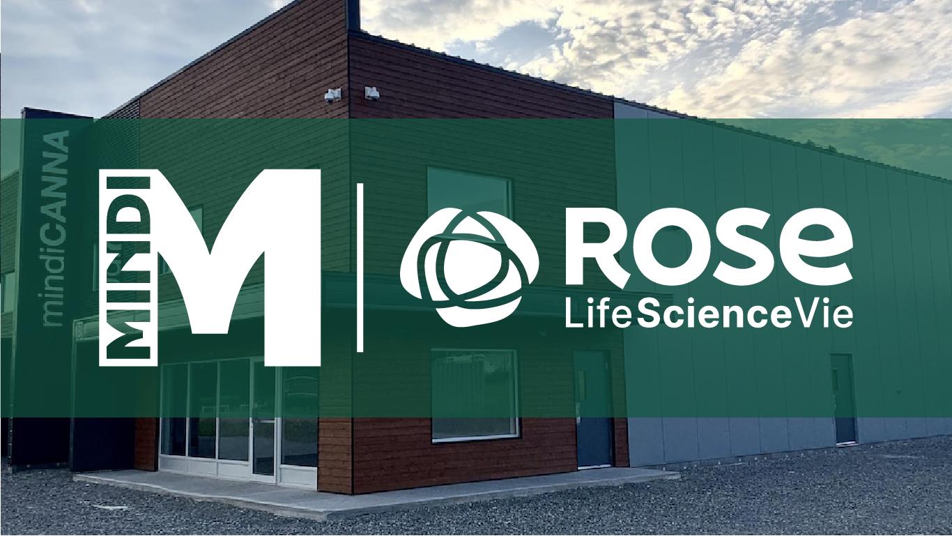 MindiCANNA ROSE ScienceVie
