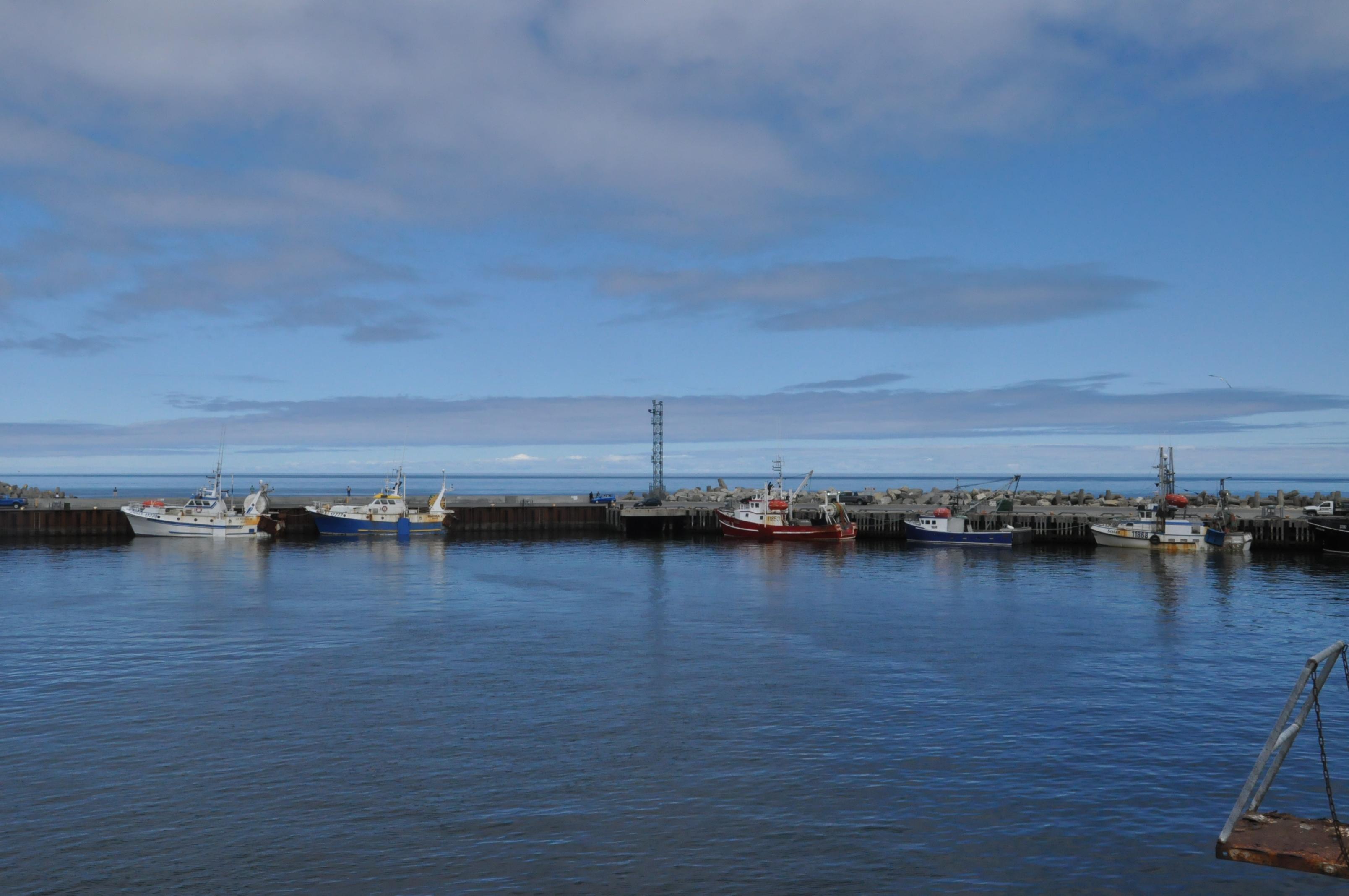 Pêche Quai Port Marina Bateaux