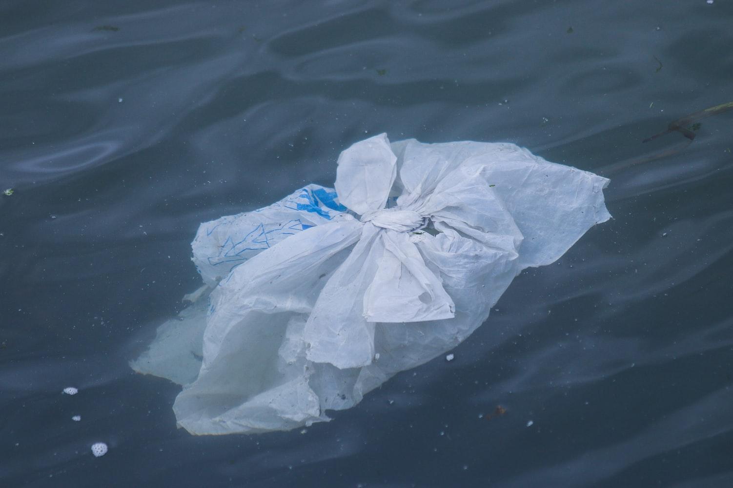 L'interdiction d'utiliser certains sacs de plastique sur le territoire de la Ville de Rimouski est reportée au 1er mars 2021.