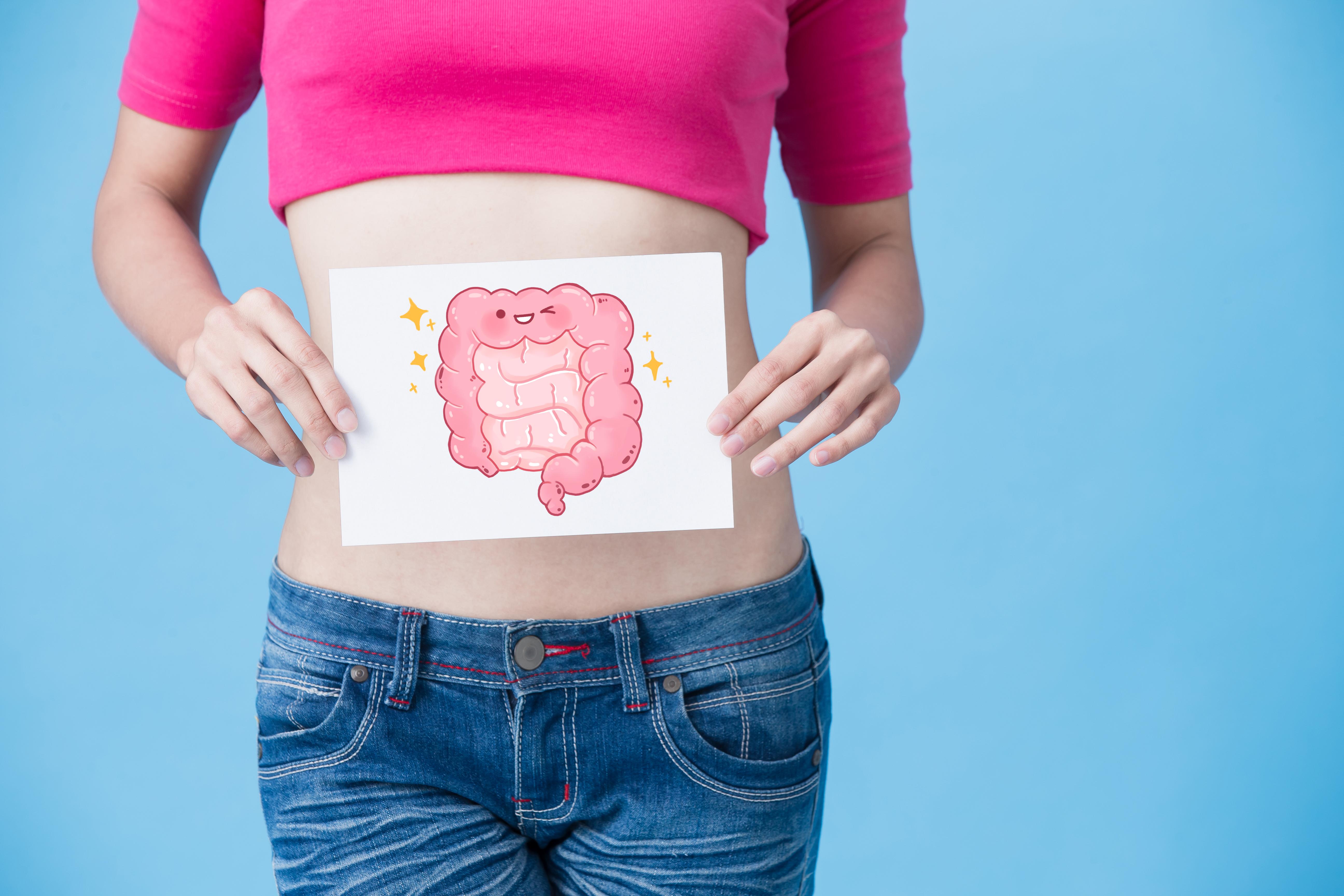 Danone Activia Santé Digestive