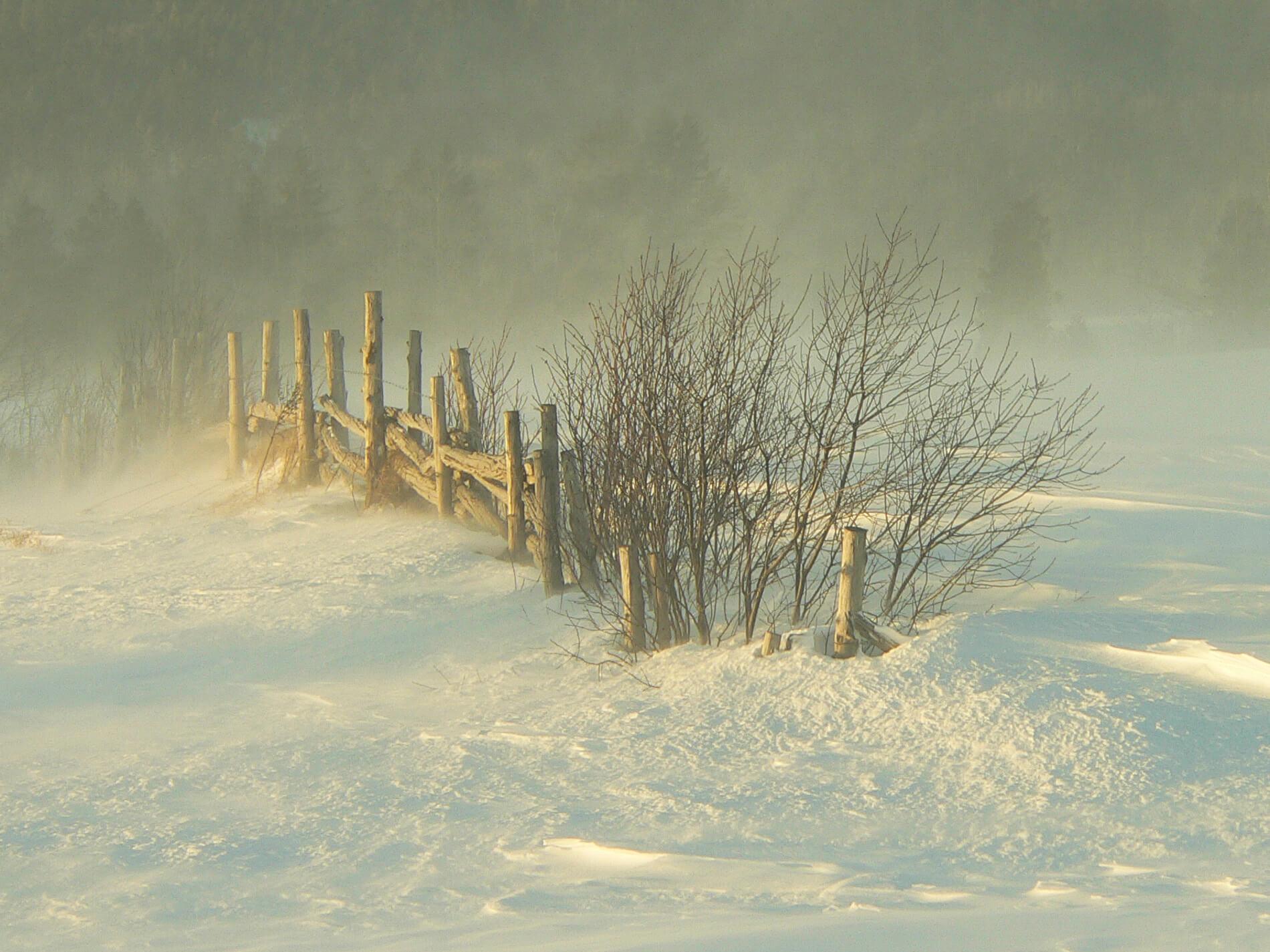 Exposition « De neiges et de lumières »