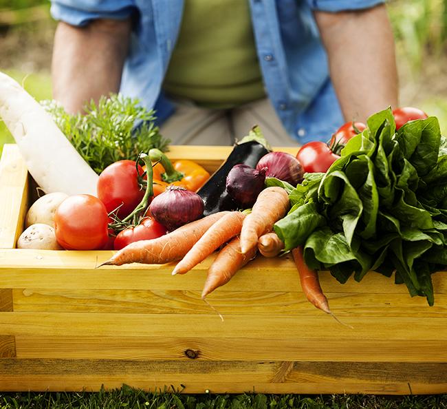 10 légumes, 5 fines herbes