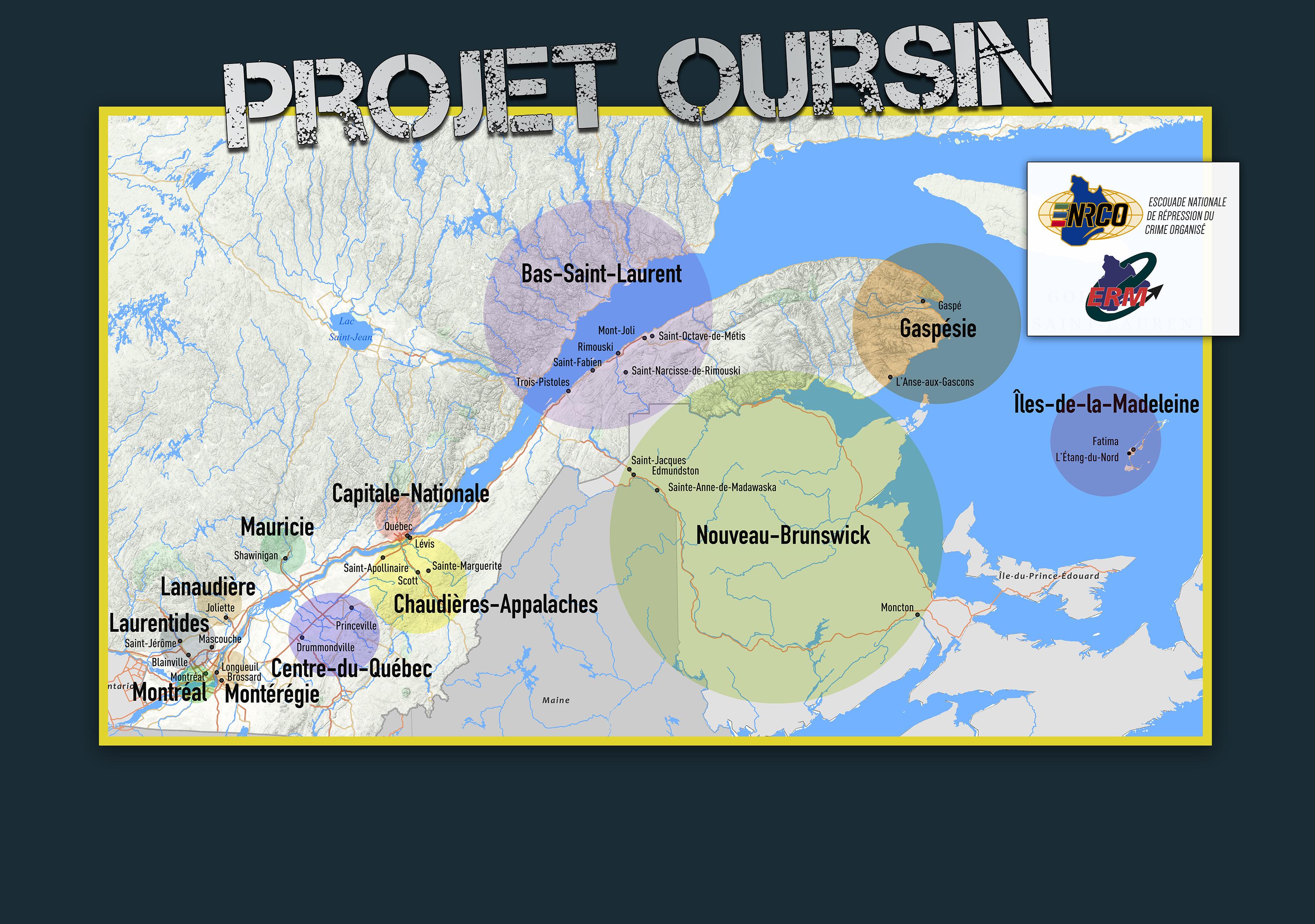 Oursin bon