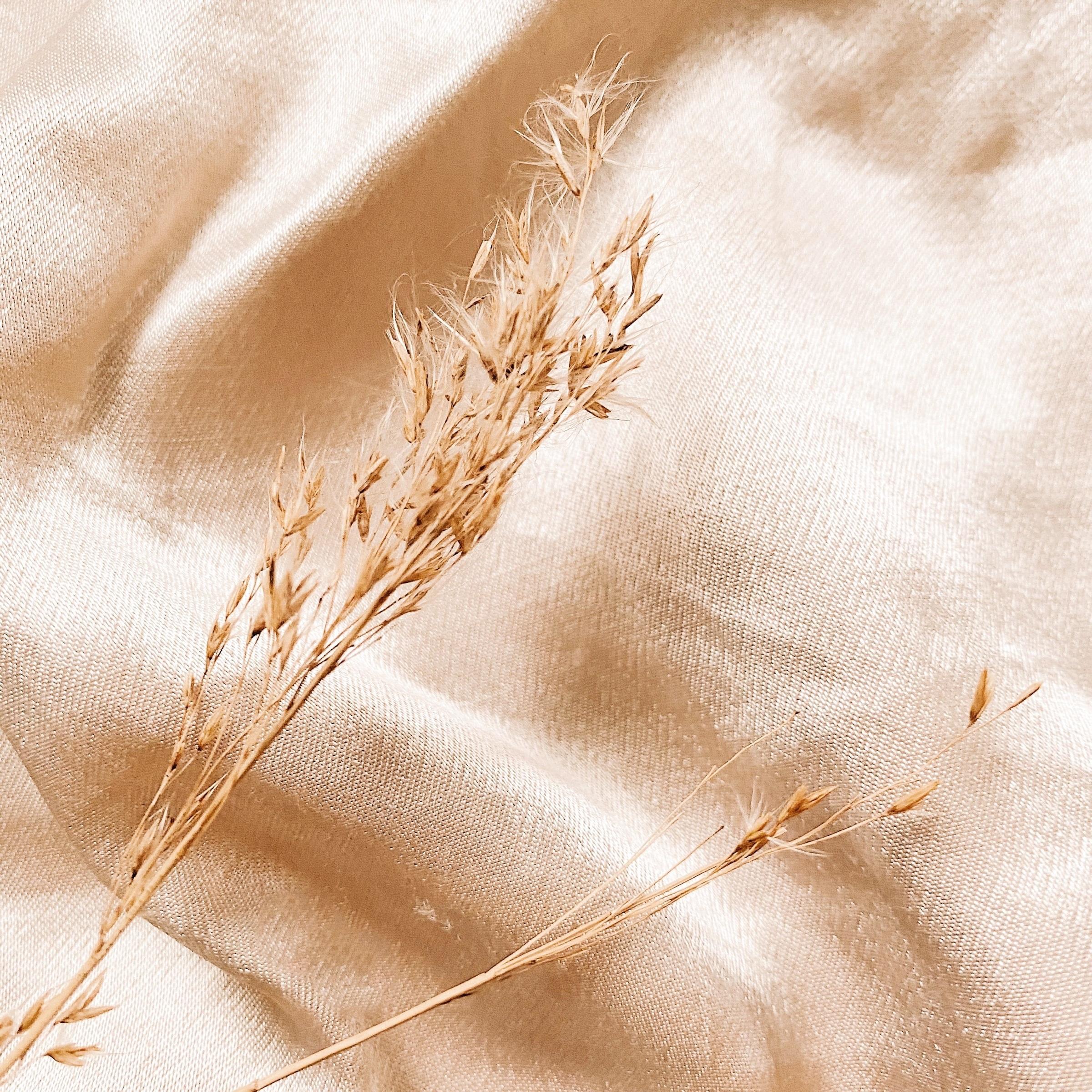 La fibre de lin peut servir à la fabrication de matériaux écologiques tels que les thermoplastiques, les isolants, les emballages et les tapis.