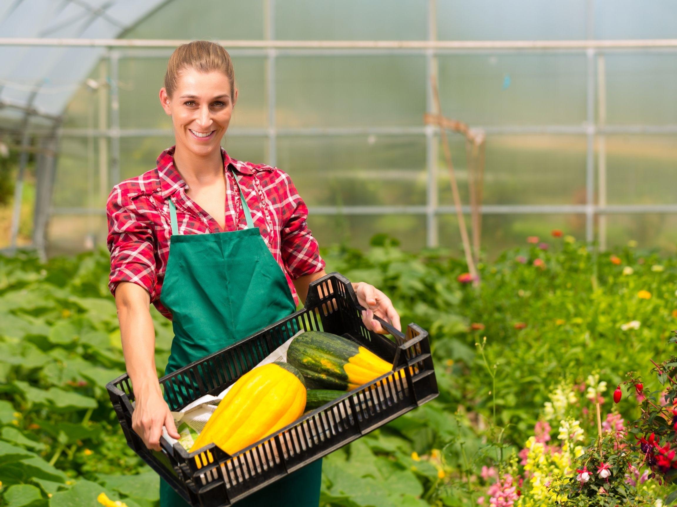 :Le Centre de formation professionnelle Mont-Joli‒Mitis offrira, dès janvier, un nouveau programme en production horticole.
