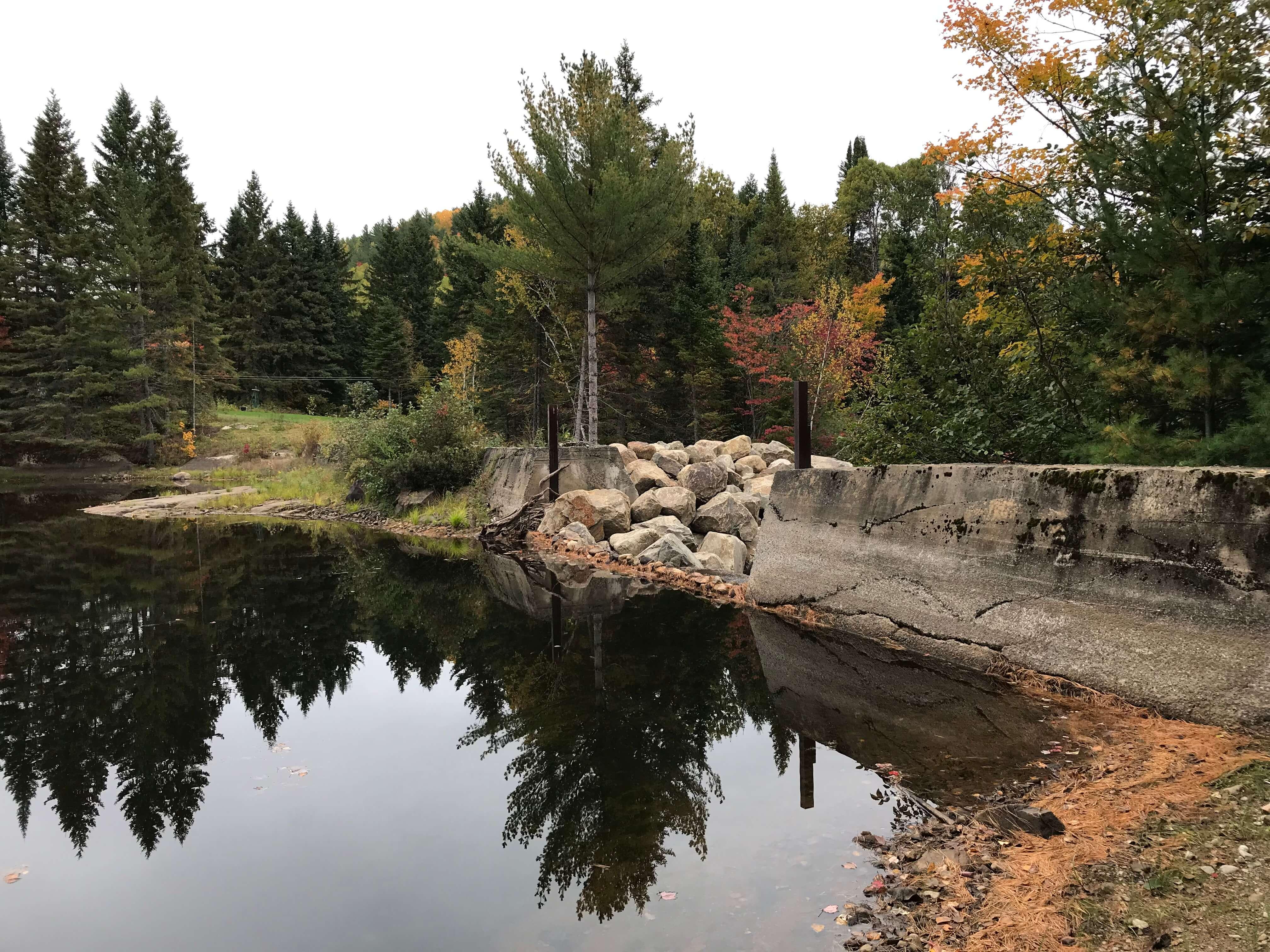 L'état de certains lacs inquiète des résidents