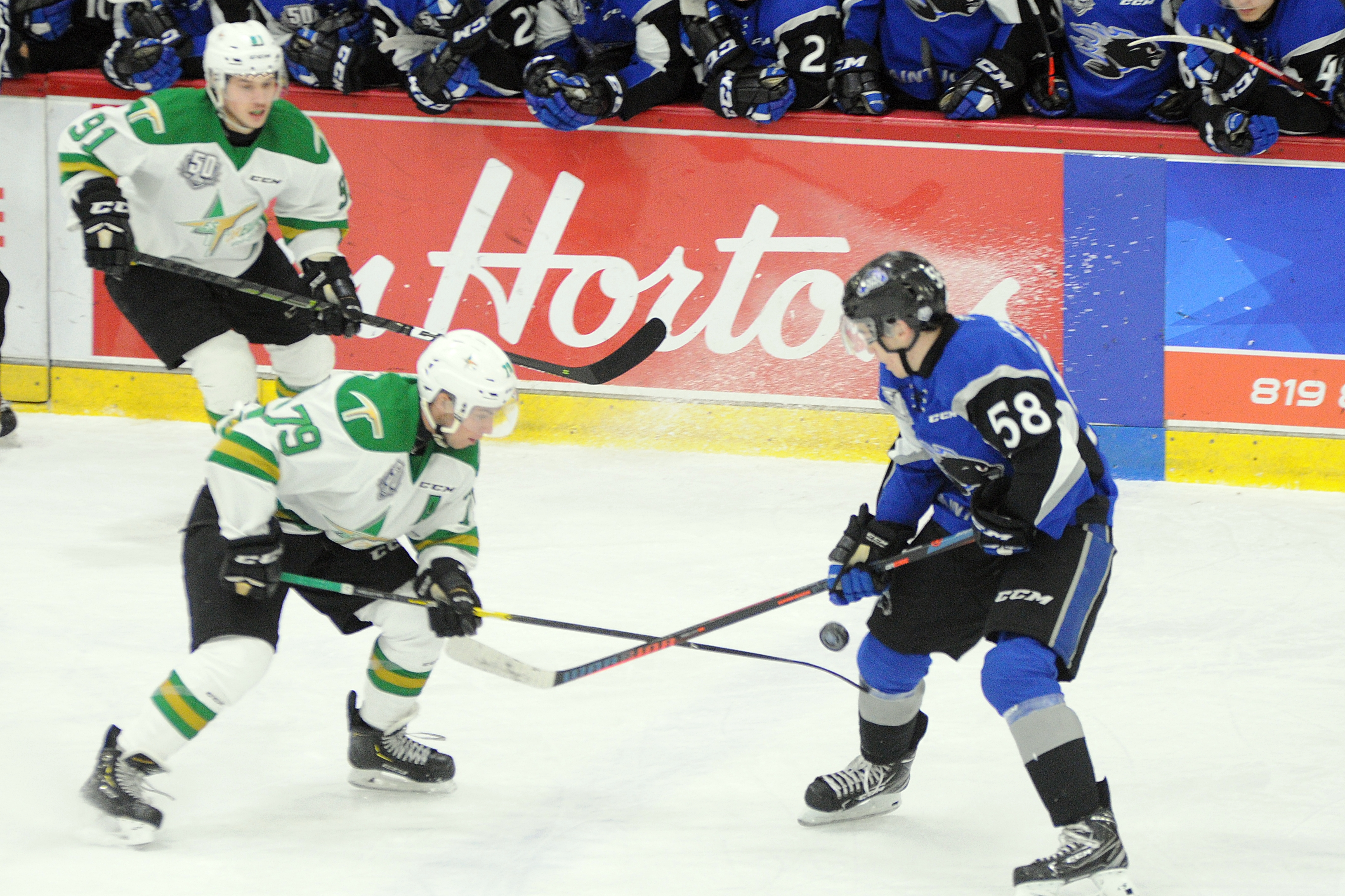 Foreurs Val-d'Or - Sea Dogs St. John