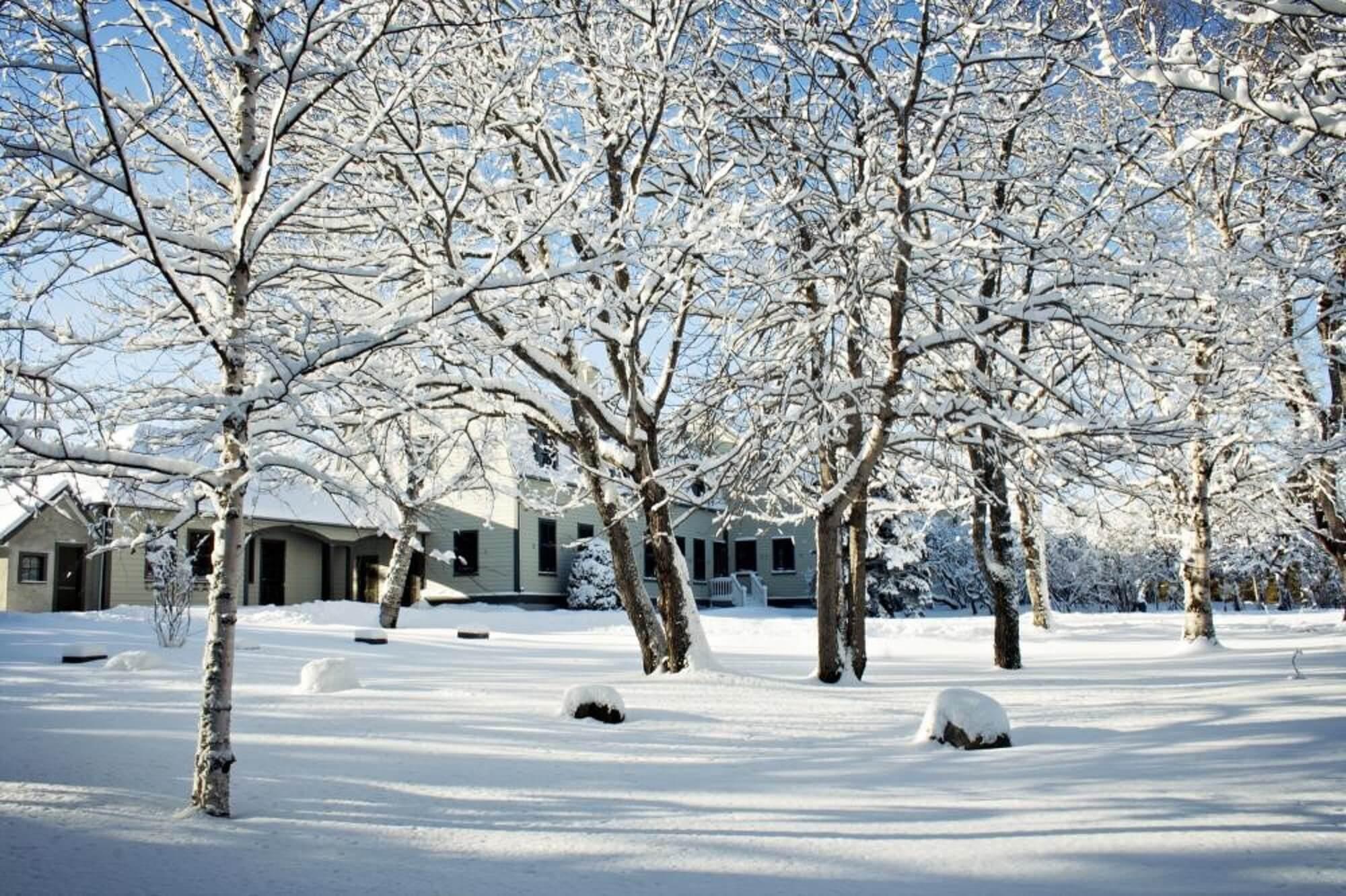 Plaisirs d'hiver aux Jardins de Métis