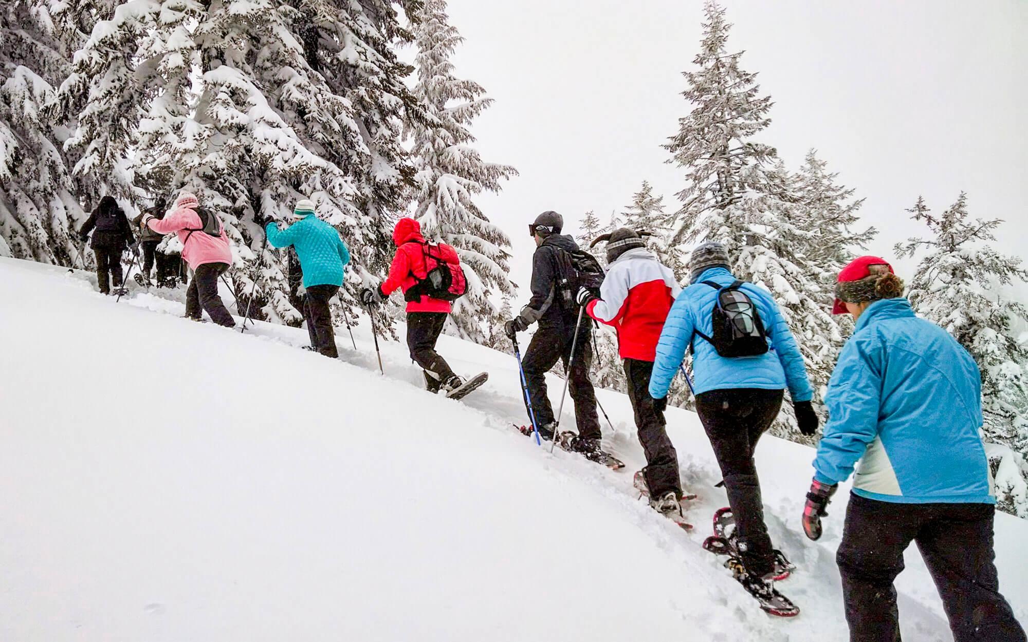 Randonnée en raquettes activité hivernale sport d'hiver