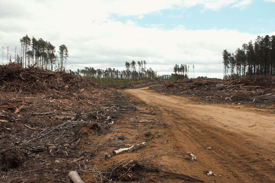Mobilisation Matawinie
