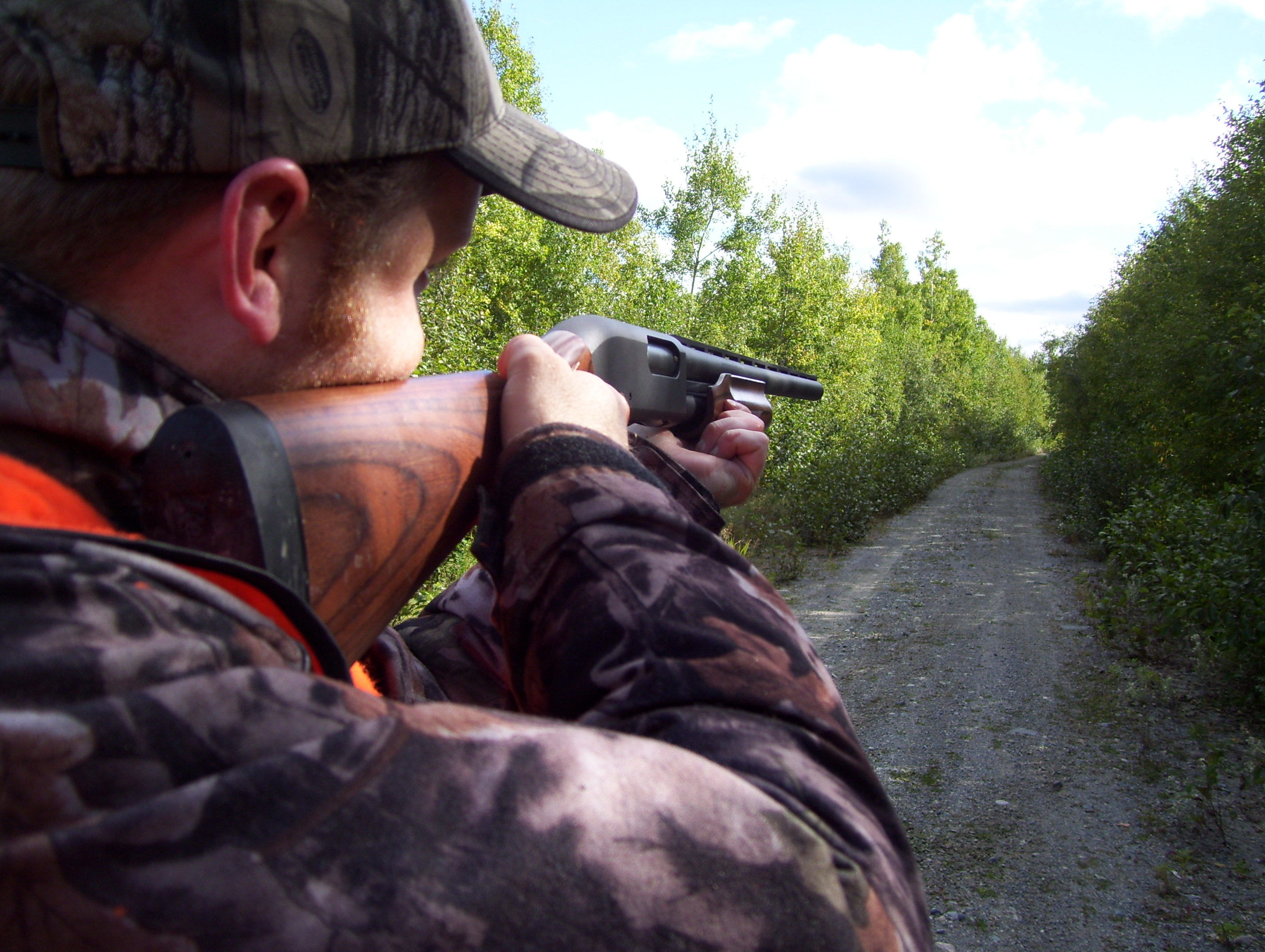 Chasse route perdrix arme