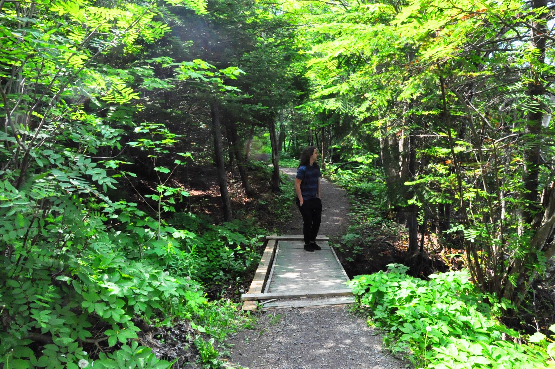 Sentier parc petit-bois