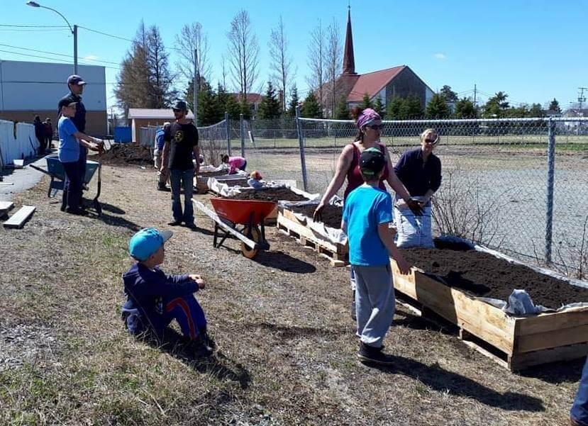 Jardins école alternative Harricana