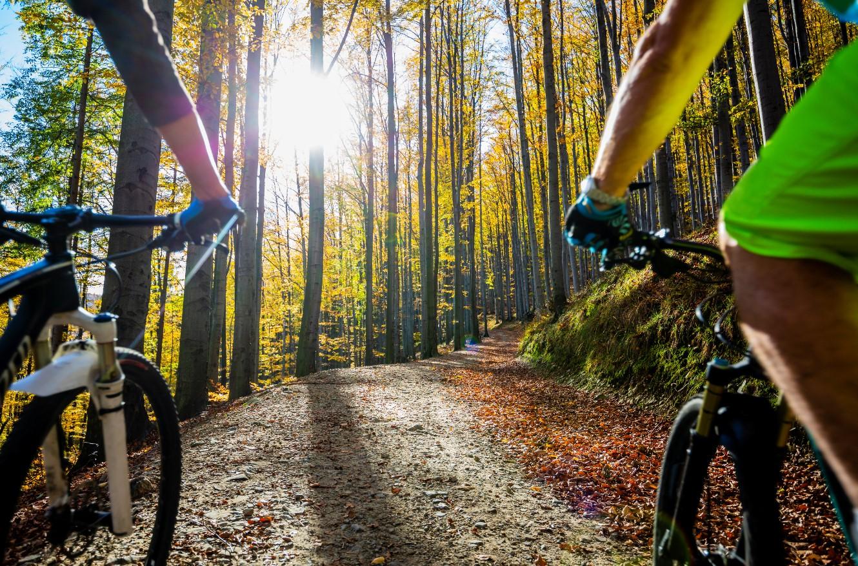 Activité couple vélo