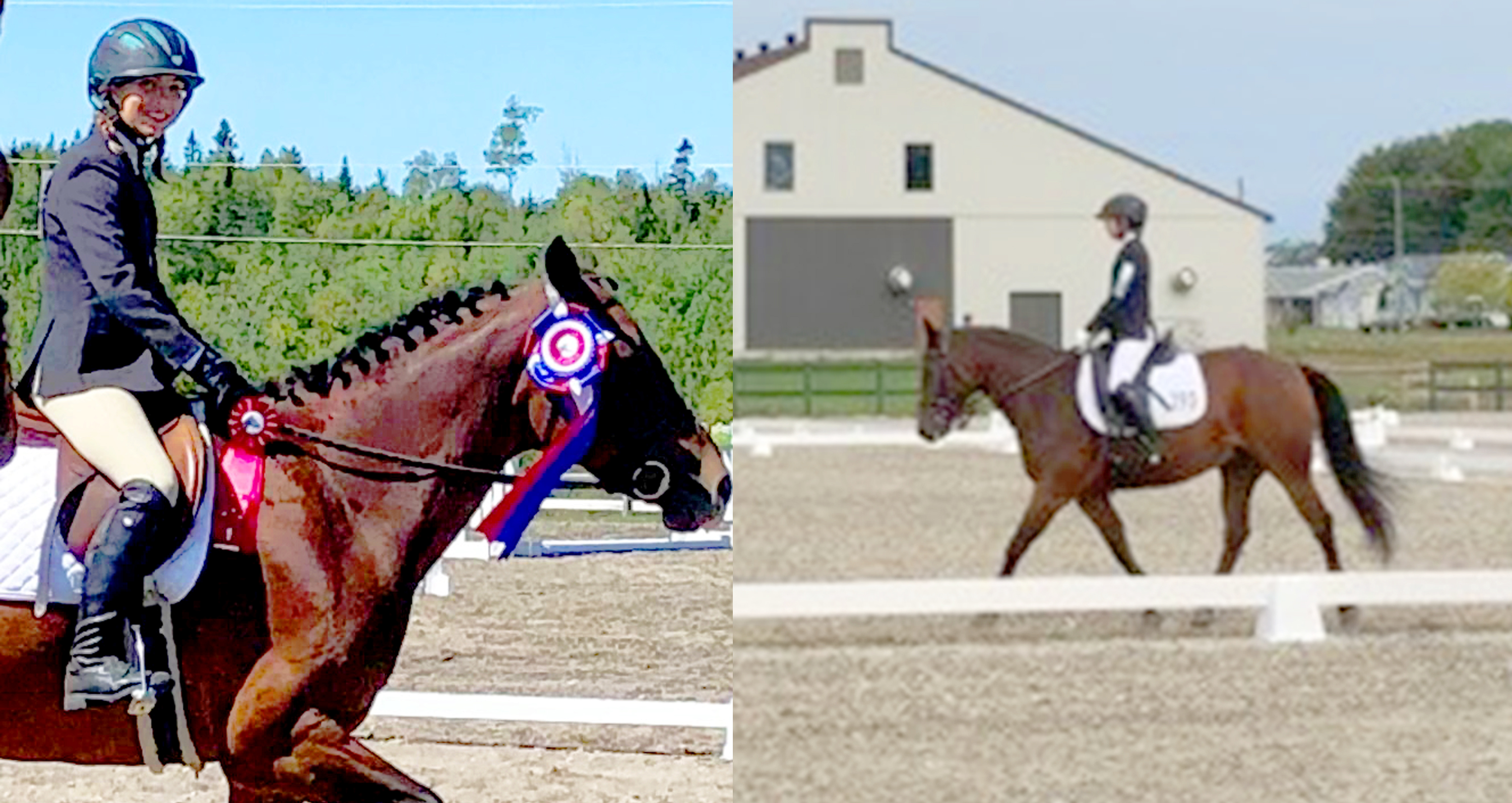 Emily Gauthier équitation