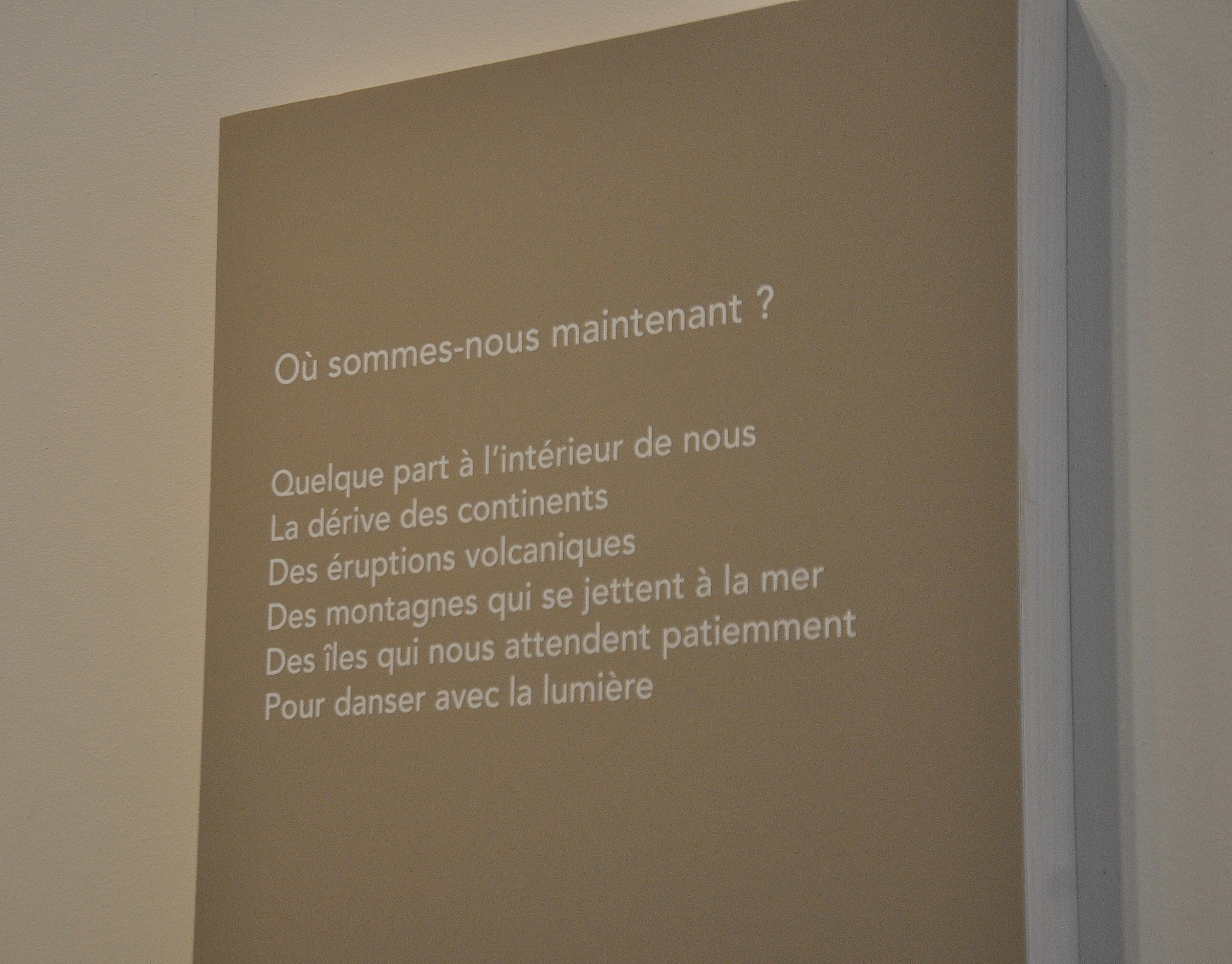 Un exemple de texte composé par Alain Michaud pour l'exposition.