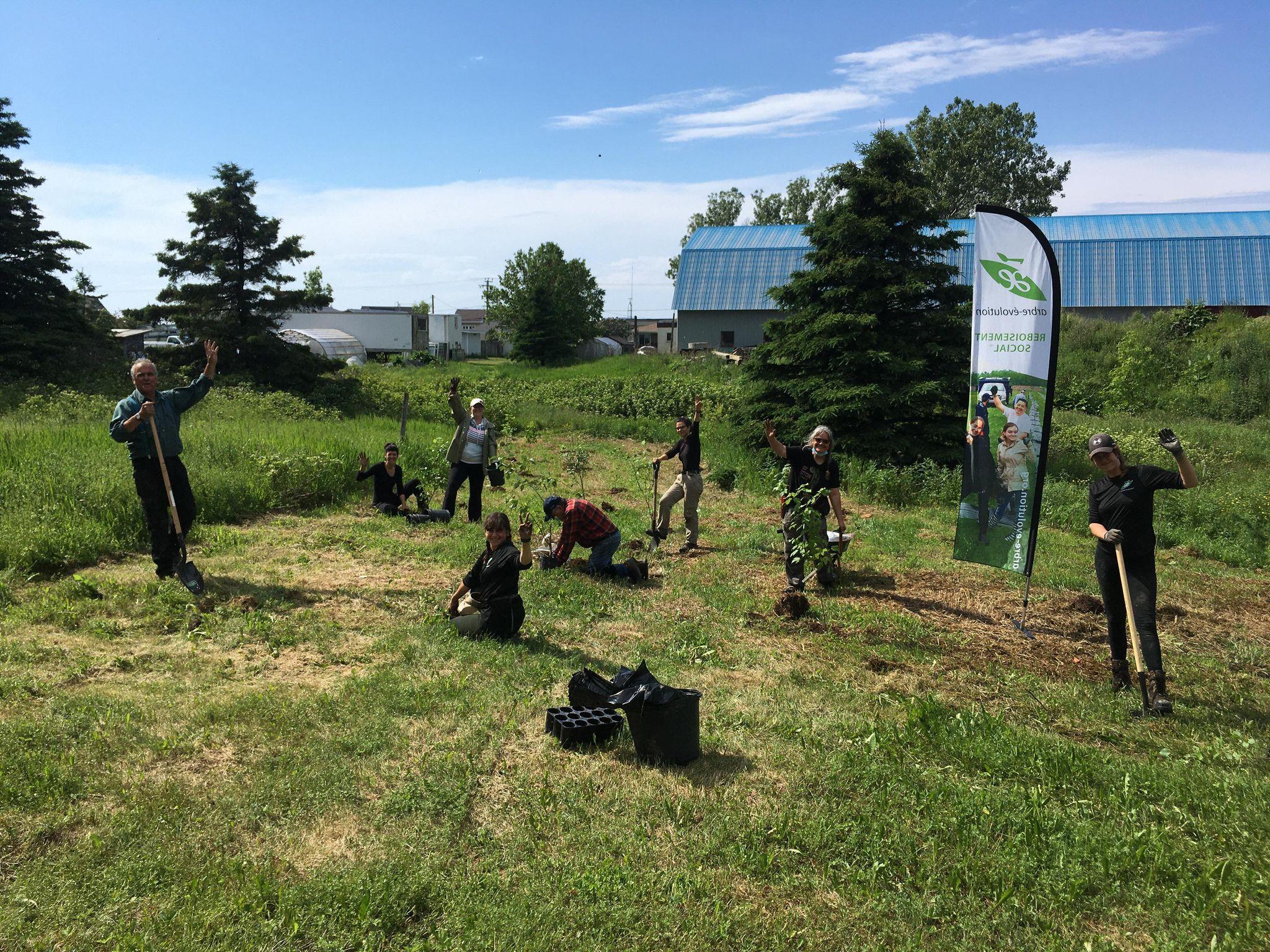 L'équipe d'Arbre-Évolution, des employés municipaux et des bénévoles ont planté 200 végétaux, le 19 juin, à Sainte-Flavie. Cinq secteurs de la municipalité ont été reboisés.