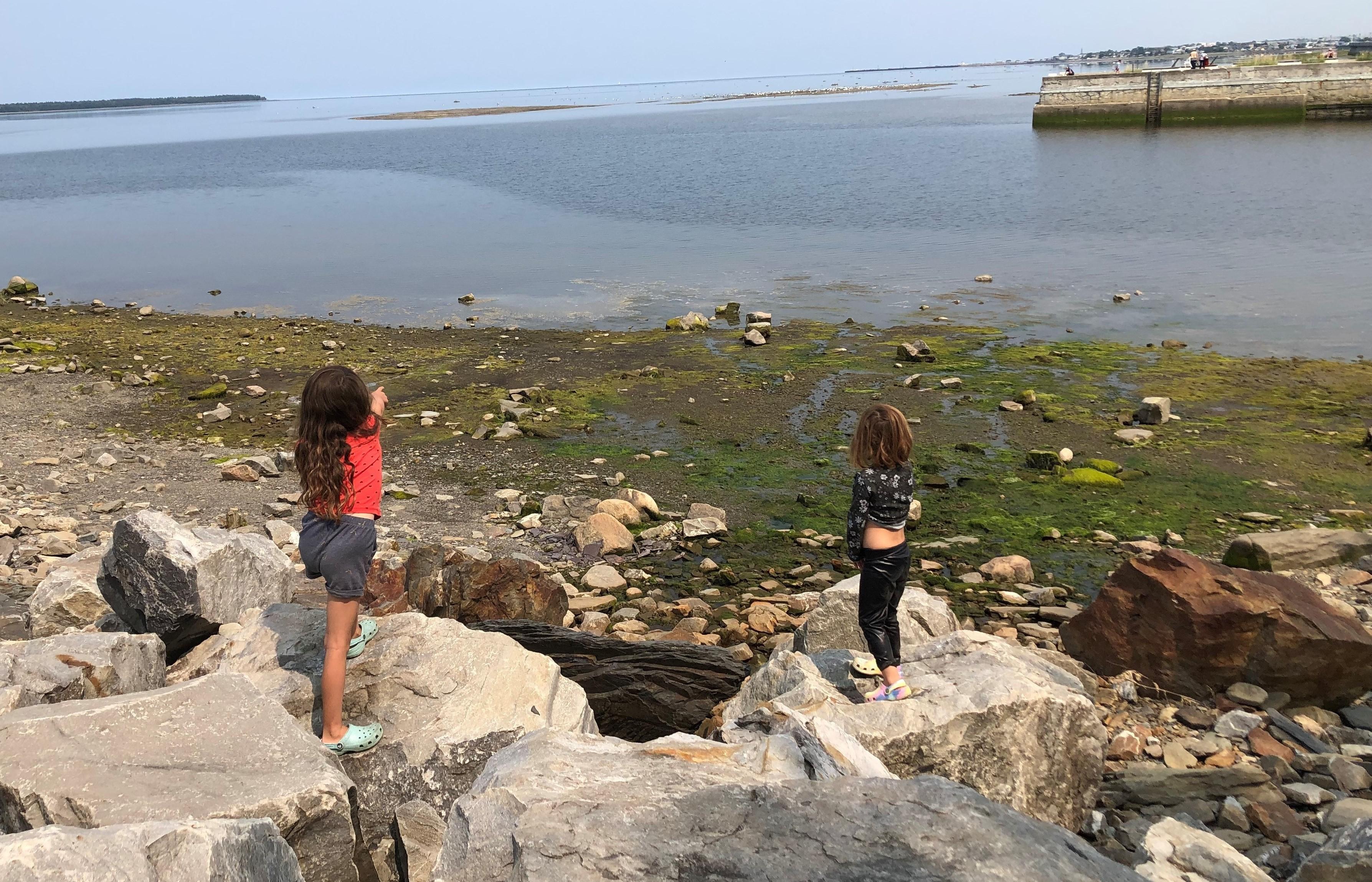 Les visiteurs sont présents en grand nombre à Rimouski. Les commerces en ressentent les effets. Tourisme.