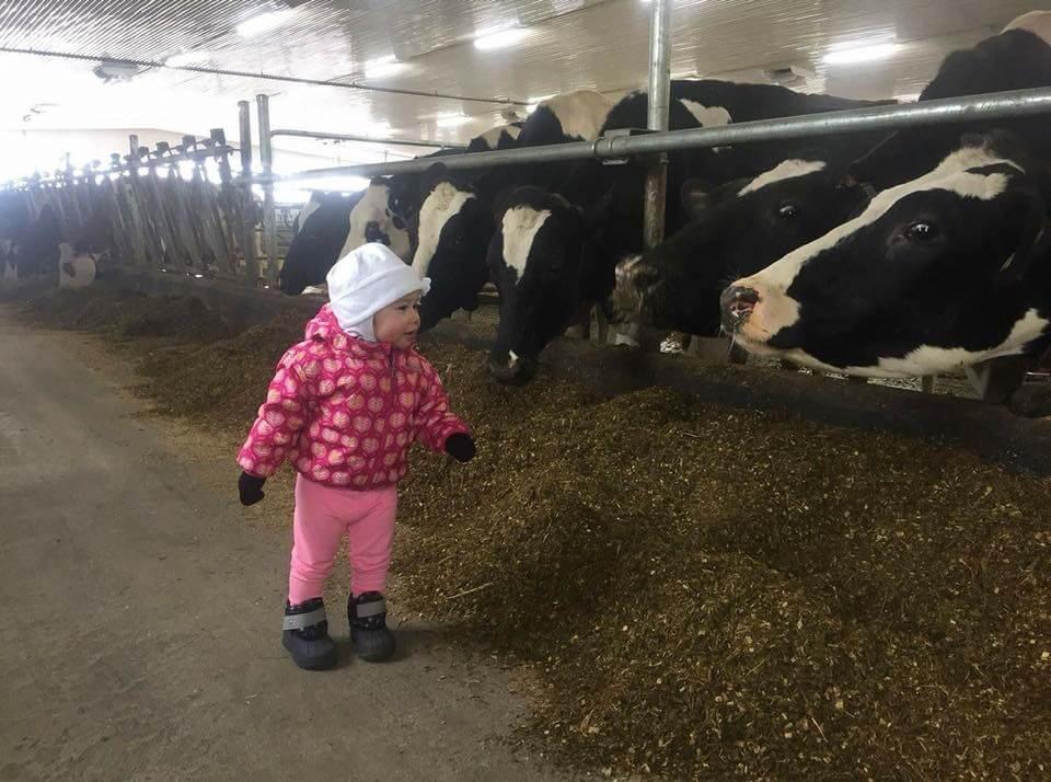 Une ferme laitière et sa relève