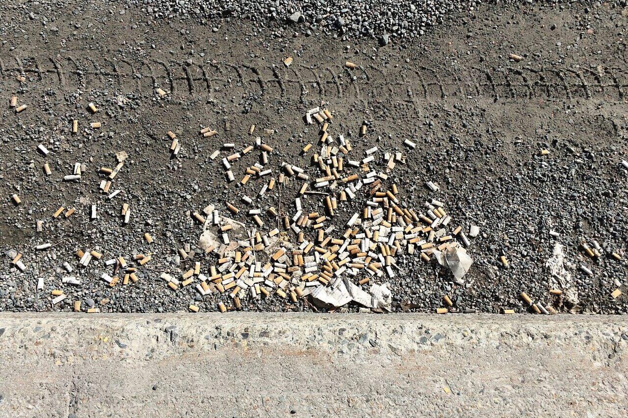 Mégot cigarette