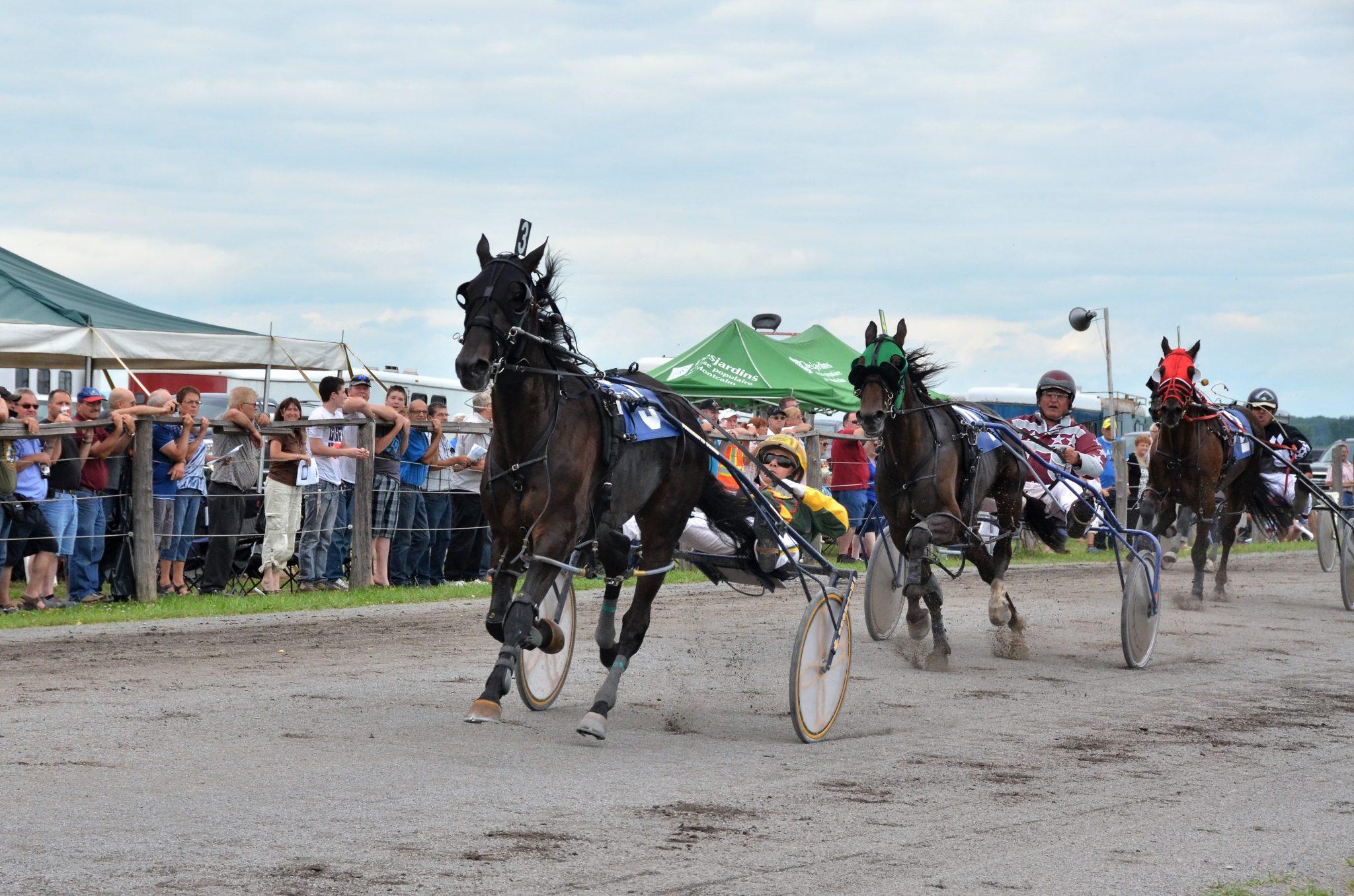 course de chevaux saint-esprit Allard